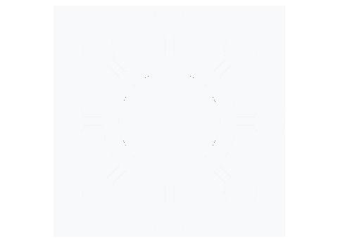 COVID-19 Icon